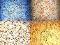 Виды покраски фасада