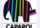 Логотип Капарол