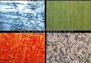 Варианты цвета для покраски короеда