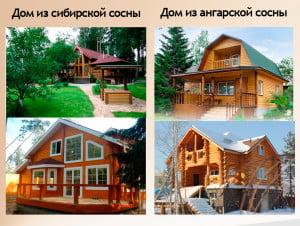 Фасад домов из Ангарской и Сибирской сосны